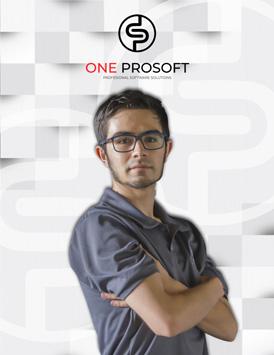 Ricardo Castillo - Desarrollador de Software